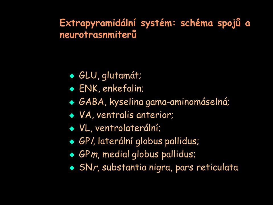 Extrapyramidální systém: schéma spojů a neurotrasnmiterů  GLU, glutamát;  ENK, enkefalin;  GABA, kyselina gama-aminomáselná;  VA, ventralis anteri