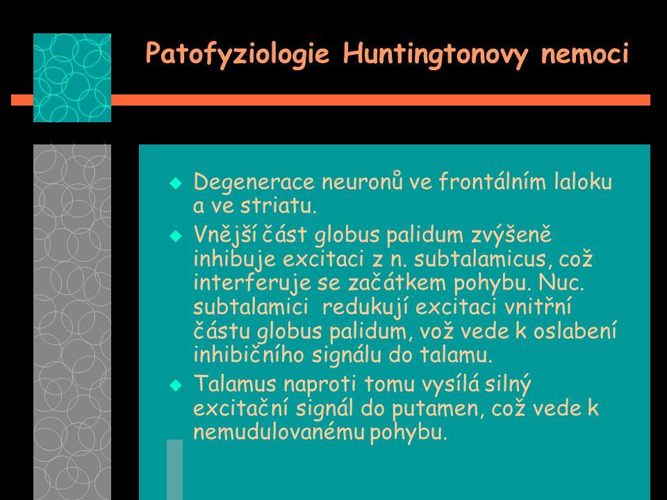 Patofyziologie Huntingtonovy nemoci  Degenerace neuronů ve frontálním laloku a ve striatu.  Vnější část globus palidum zvýšeně inhibuje excitaci z n