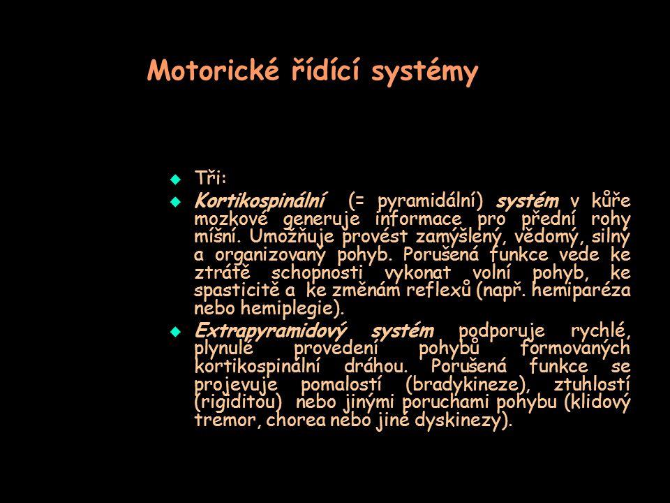Motorické řídící systémy  Tři:  Kortikospinální (= pyramidální) systém v kůře mozkové generuje informace pro přední rohy míšní. Umožňuje provést zam
