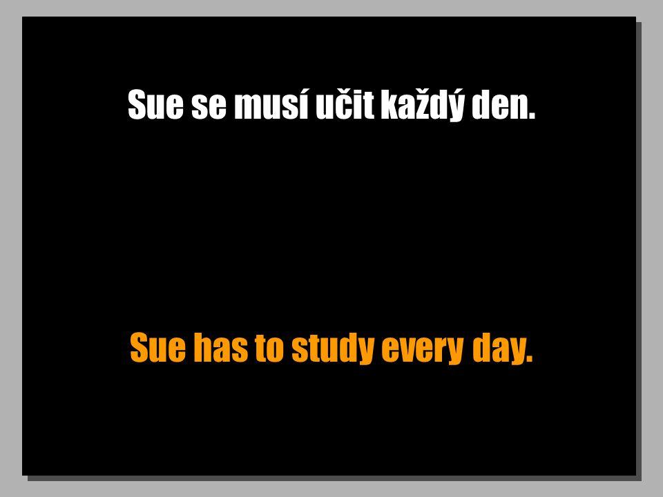 Sue se musí učit každý den. Sue has to study every day.