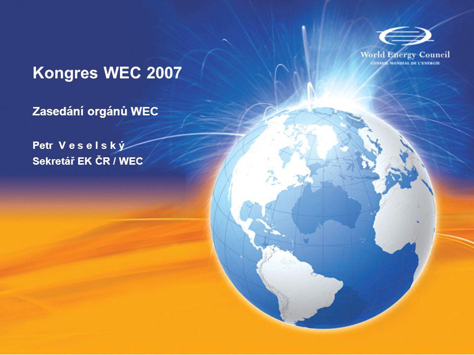 Zasedání orgánů WEC, Řím 2007 Executive Assembly / Valné shromáždění WEC Studies Committee Zasedání WEC Europe Jednání WEC Europe a Evropská komise WEC Secretaries