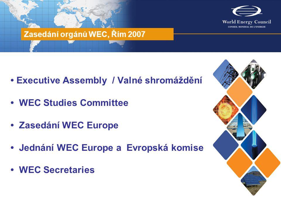 """Executive Assembly 11.11.2007 schváleny zprávy WEC Studies, Programme, Communication & Outreach; rozpočty WEC a WSL, příspěvky 2008; WEC Business Plan 2008 2010; přijaty dodatky WEC Rules / Stanov; nominace """"Officers a """"Honorary Officers ; Pierre Gadonneix (FR, Pres."""
