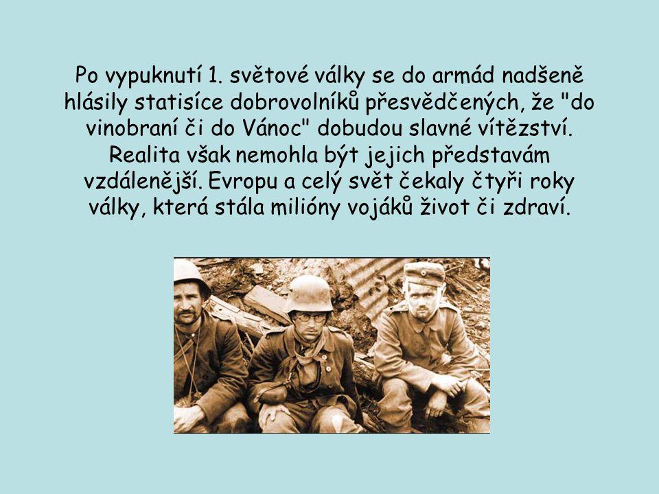 Po vypuknutí 1. světové války se do armád nadšeně hlásily statisíce dobrovolníků přesvědčených, že