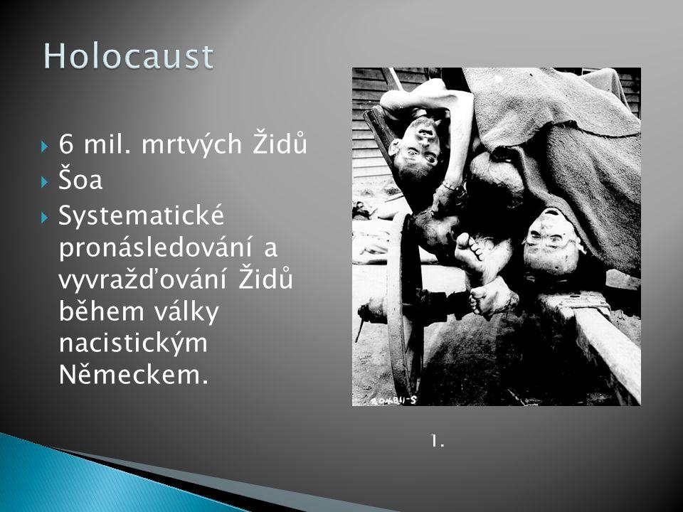  6 mil. mrtvých Židů  Šoa  Systematické pronásledování a vyvražďování Židů během války nacistickým Německem. 1.
