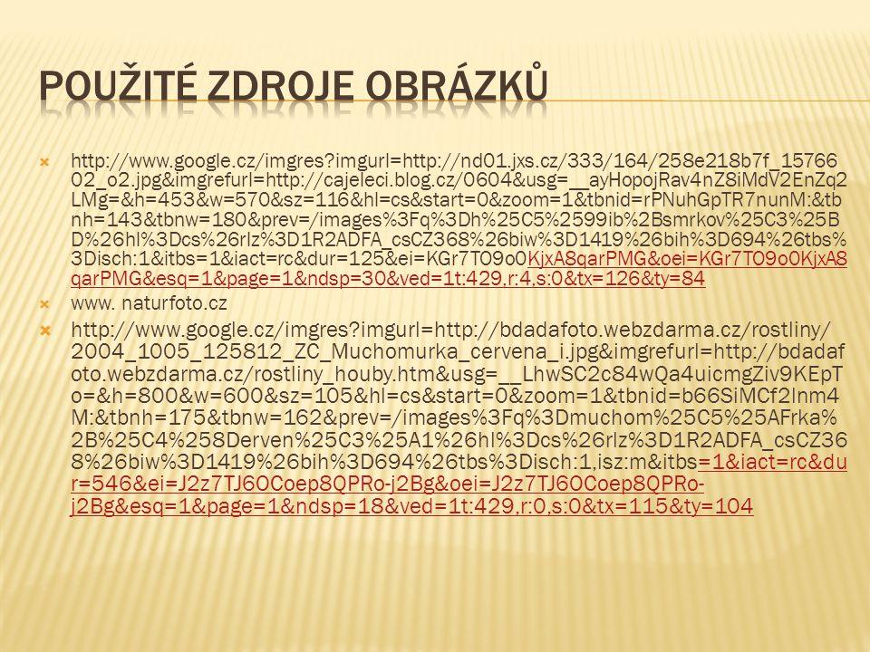  http://www.google.cz/imgres?imgurl=http://nd01.jxs.cz/333/164/258e218b7f_15766 02_o2.jpg&imgrefurl=http://cajeleci.blog.cz/0604&usg=__ayHopojRav4nZ8