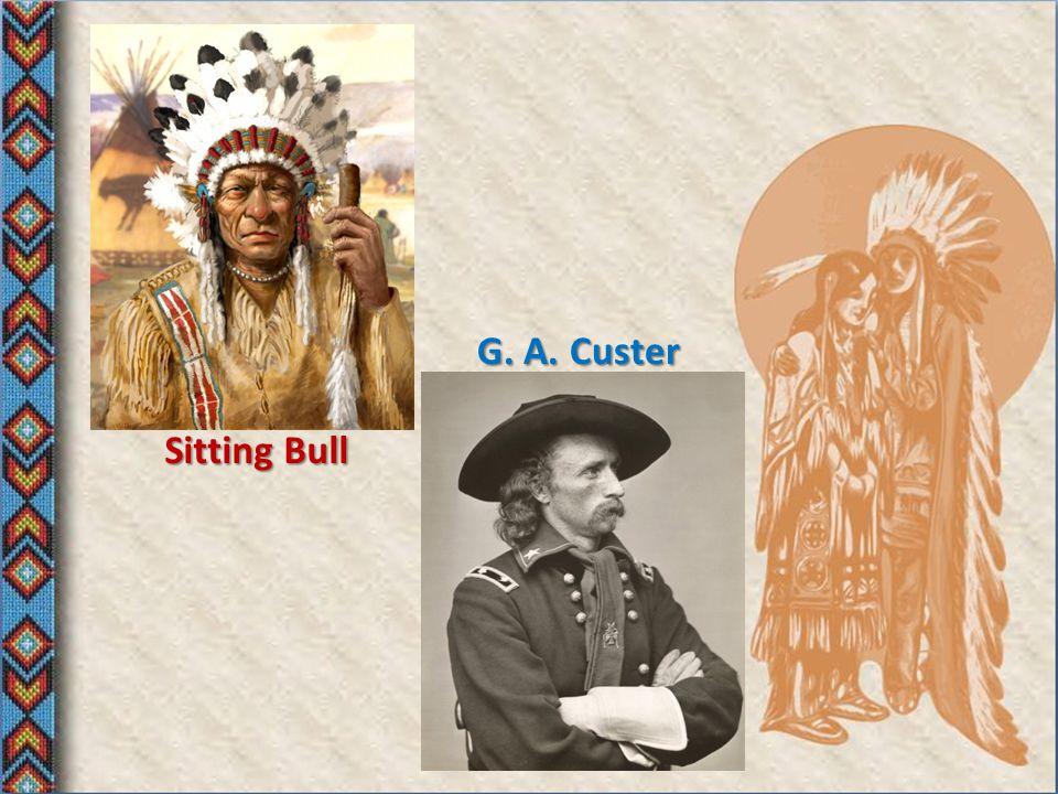 V 70. letech 19. století se po USA rozšířila zvěst o tom, že se v dakotských horách na území Siouxů našlo zlato a vypukla tak zlatá horečka. Na území,