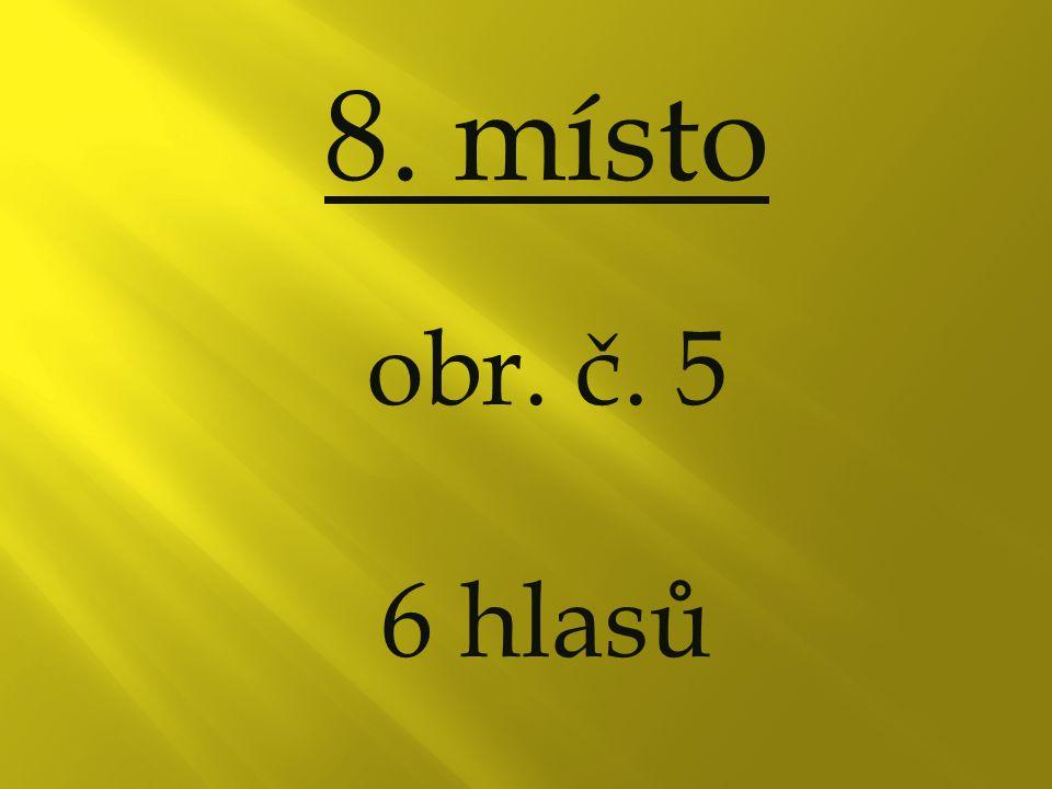 8. místo obr. č. 5 6 hlasů