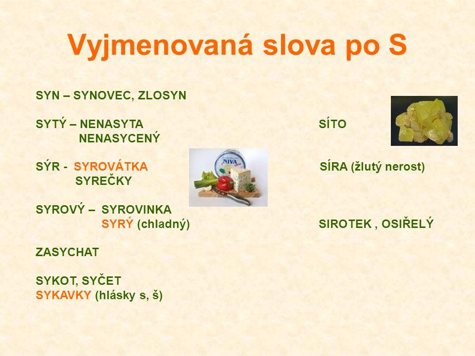 Vyjmenovaná slova po S SYN – SYNOVEC, ZLOSYN SYTÝ – NENASYTA SÍTO NENASYCENÝ SÝR - SYROVÁTKA SÍRA (žlutý nerost) SYREČKY SYROVÝ – SYROVINKA SYRÝ (chla