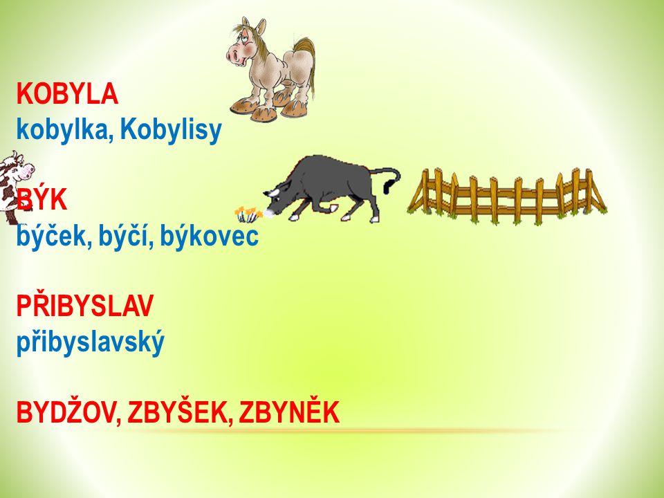 KOBYLA kobylka, Kobylisy BÝK býček, býčí, býkovec PŘIBYSLAV přibyslavský BYDŽOV, ZBYŠEK, ZBYNĚK