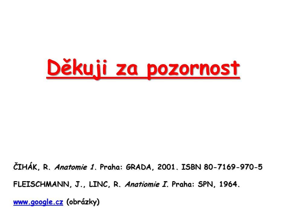 Děkuji za pozornost ČIHÁK, R. Anatomie 1. Praha: GRADA, 2001. ISBN 80-7169-970-5 FLEISCHMANN, J., LINC, R. Anatiomie I. Praha: SPN, 1964. www.google.c