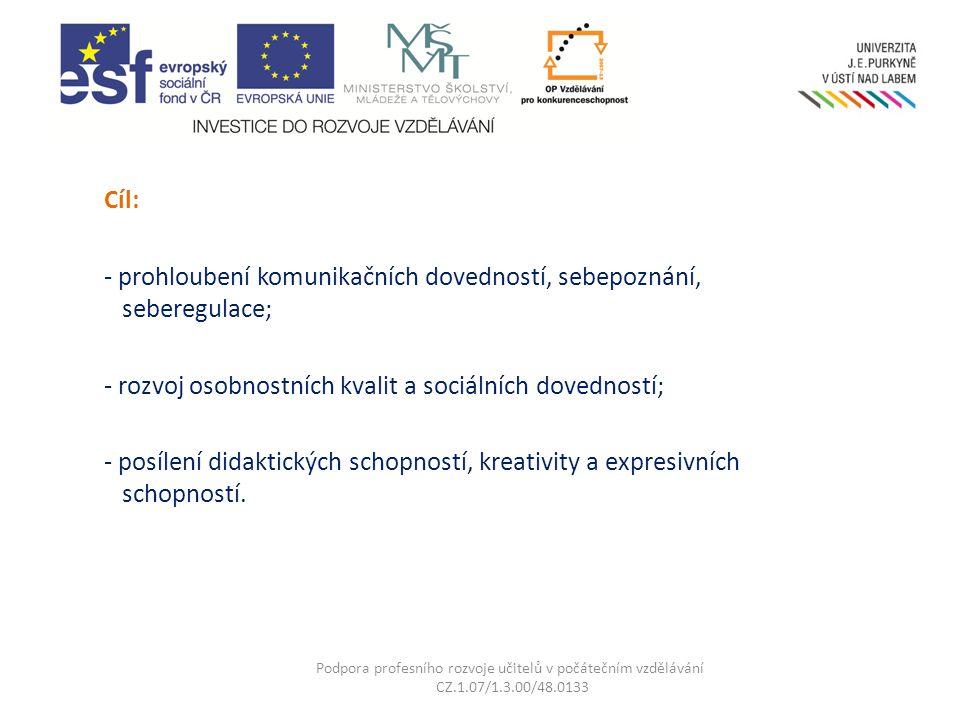 Kurzy a semináře této KA jsou určeny pro účastníky vzdělávání v klíčových aktivitách KA01 – KA03 Podpora profesního rozvoje učitelů v počátečním vzdělávání CZ.1.07/1.3.00/48.0133