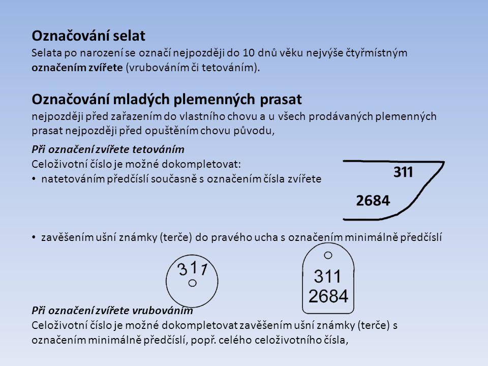 Označování selat Selata po narození se označí nejpozději do 10 dnů věku nejvýše čtyřmístným označením zvířete (vrubováním či tetováním). Označování ml
