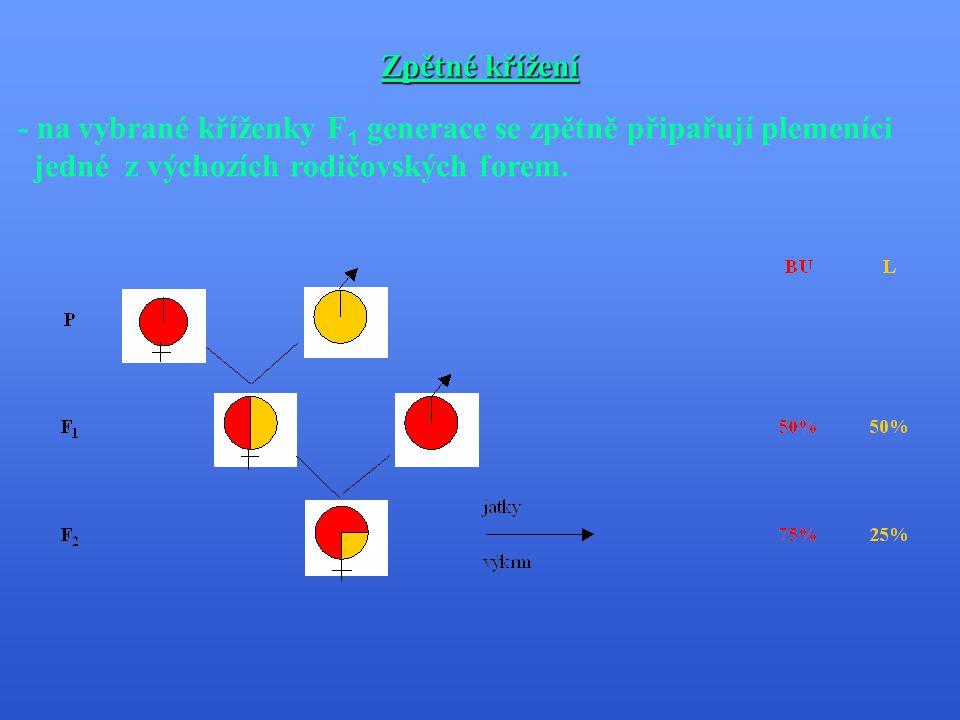 Čtyřplemenné křížení - kříží se 2 plemena (A,B) + 2 plemena (C,D) mezi sebou  pak F 1 generaci (F AB ) a (F CD ) mezi sebou.