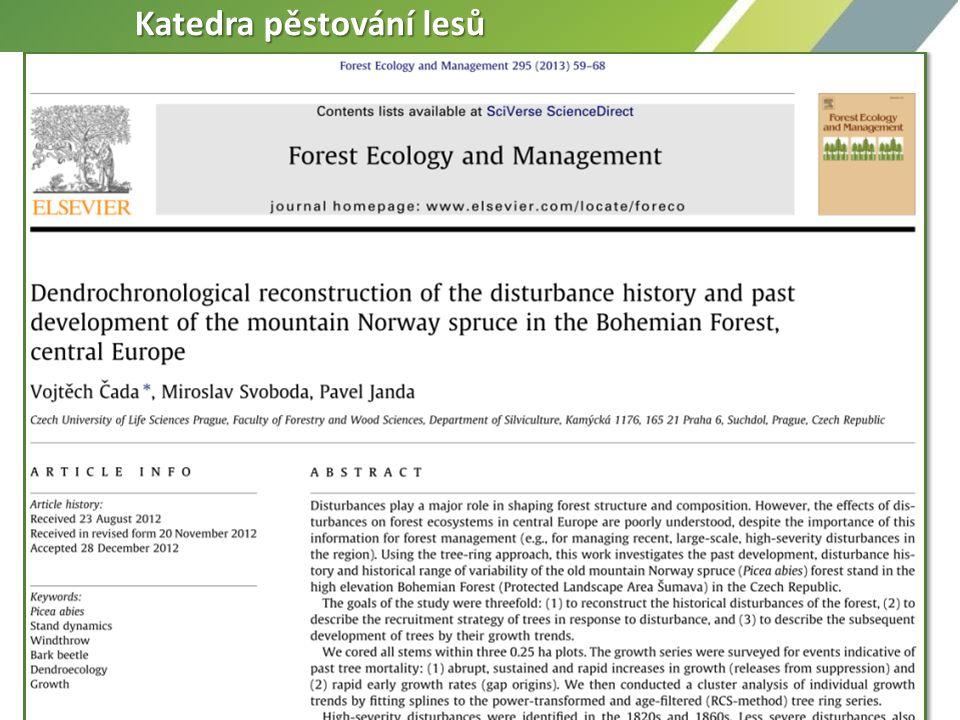 Výzkum 1. Dynamika a funkce lesních ekosystémů - disturbance a jejich vliv na primární lesy Výzkum 1. Dynamika a funkce lesních ekosystémů - disturban