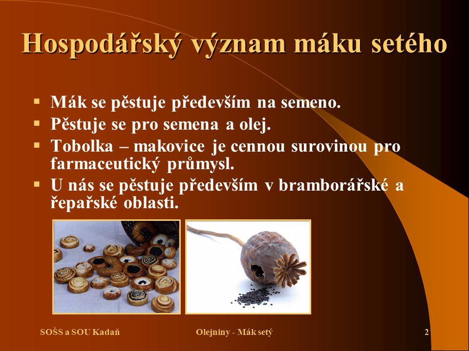 SOŠS a SOU KadaňOlejniny - Mák setý2 Hospodářský význam máku setého  Mák se pěstuje především na semeno.  Pěstuje se pro semena a olej.  Tobolka –