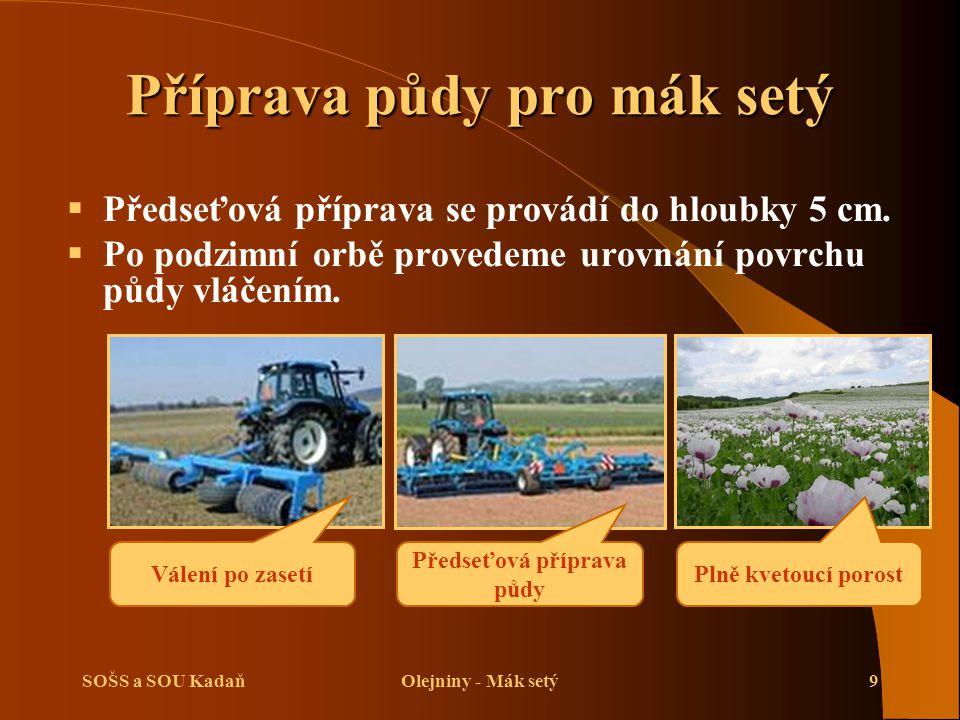 SOŠS a SOU KadaňOlejniny - Mák setý9 Příprava půdy pro mák setý  Předseťová příprava se provádí do hloubky 5 cm.  Po podzimní orbě provedeme urovnán