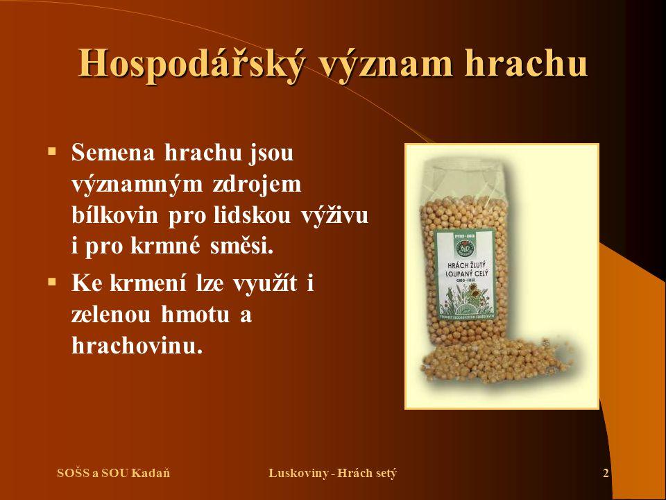 SOŠS a SOU KadaňLuskoviny - Hrách setý2 Hospodářský význam hrachu  Semena hrachu jsou významným zdrojem bílkovin pro lidskou výživu i pro krmné směsi