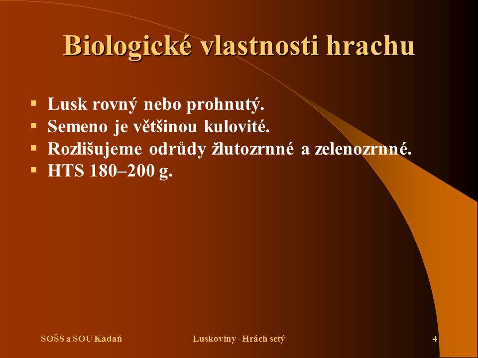 SOŠS a SOU KadaňLuskoviny - Hrách setý4 Biologické vlastnosti hrachu  Lusk rovný nebo prohnutý.  Semeno je většinou kulovité.  Rozlišujeme odrůdy ž