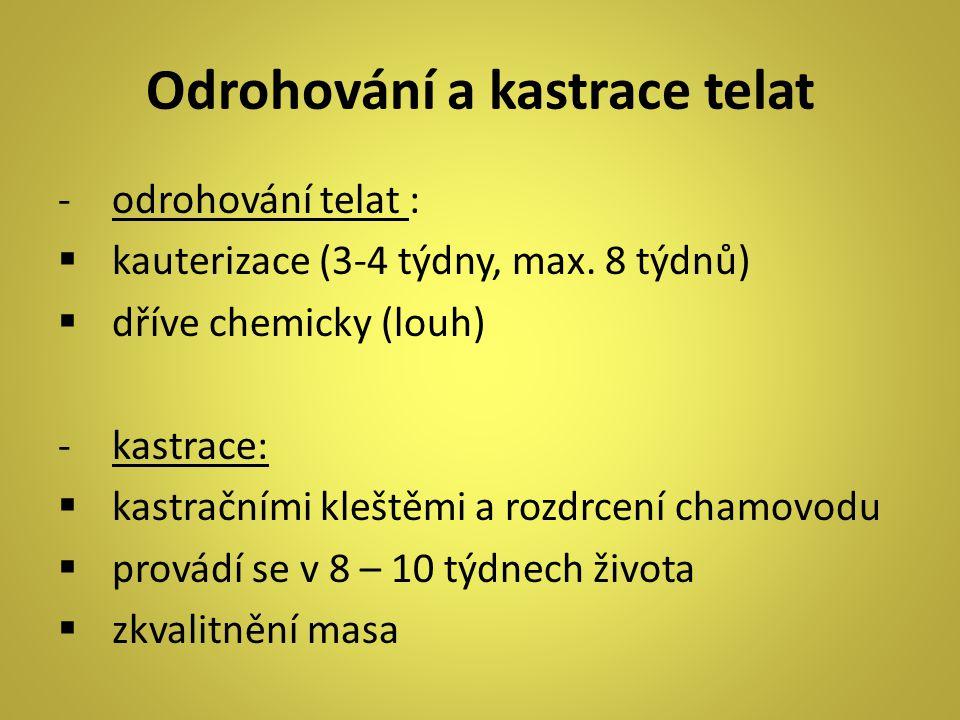 Odrohování a kastrace telat -odrohování telat :  kauterizace (3-4 týdny, max. 8 týdnů)  dříve chemicky (louh) -kastrace:  kastračními kleštěmi a ro