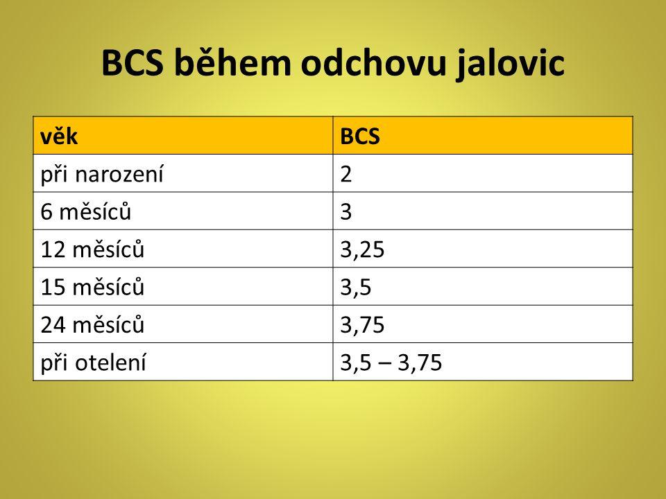 BCS během odchovu jalovic věkBCS při narození2 6 měsíců3 12 měsíců3,25 15 měsíců3,5 24 měsíců3,75 při otelení3,5 – 3,75