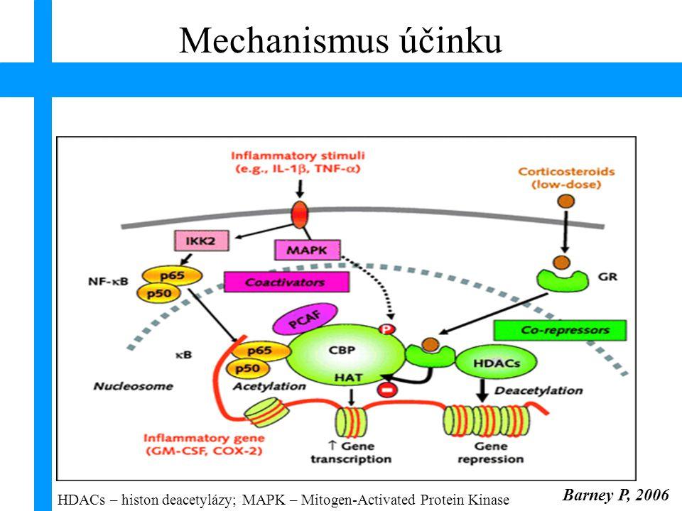 úloha LIPOCORTINU kortikosteroidy fosfolipáza A 2 fosfolipidová membrána arachidonová kyselina cyklooxygenáza lipoxygenáza leukotrienyprostaglandiny lipocortin Mechanismus účinku