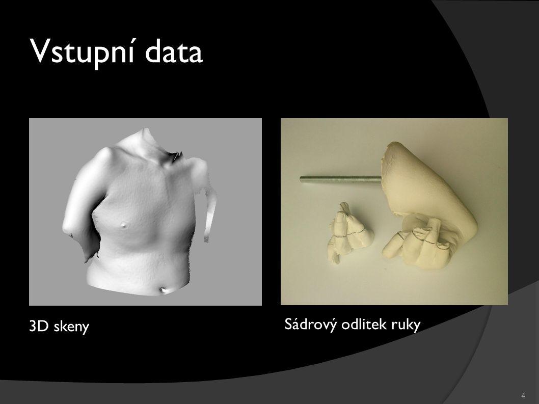 4 Vstupní data 3D skeny Sádrový odlitek ruky
