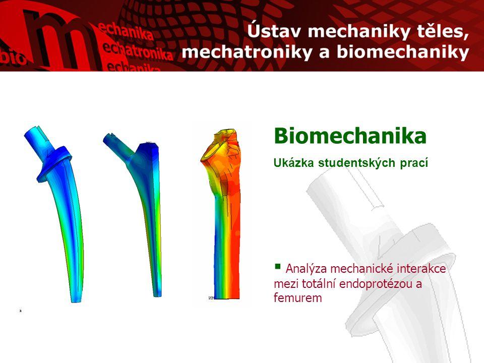 Biomechanika Ukázka studentských prací  Analýza mechanické interakce mezi totální endoprotézou a femurem