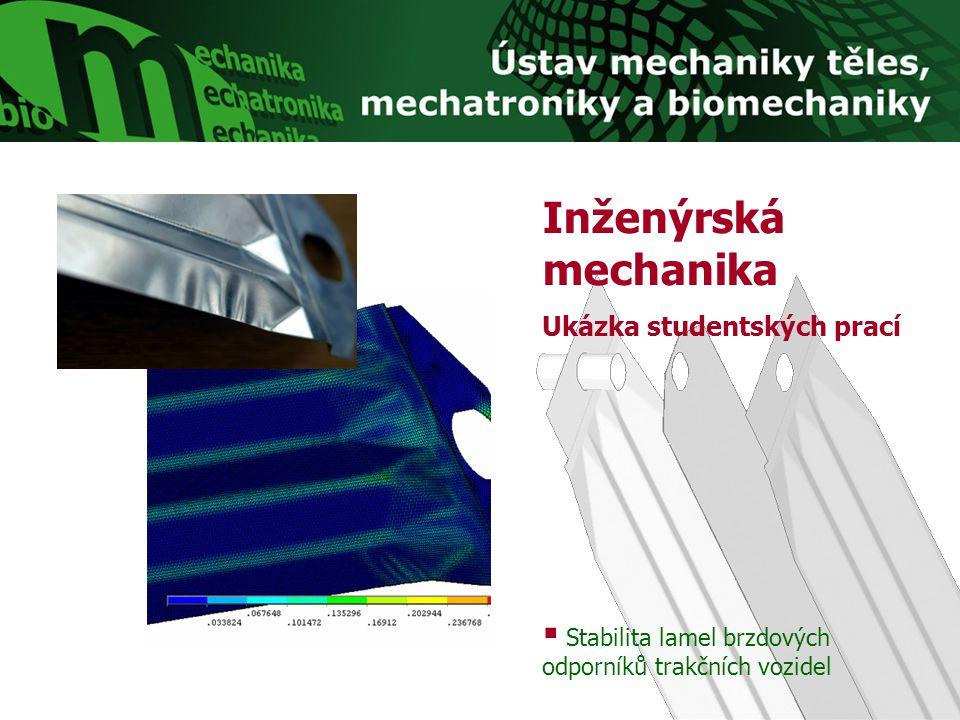 Biomechanika Ukázka studentských prací  Deformačně-napěťová analýza páteřního segmentu