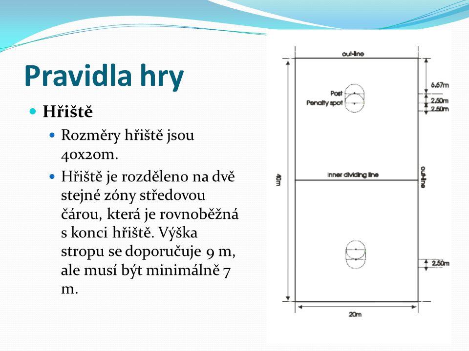 Pravidla hry Hřiště Rozměry hřiště jsou 40x20m. Hřiště je rozděleno na dvě stejné zóny středovou čárou, která je rovnoběžná s konci hřiště. Výška stro