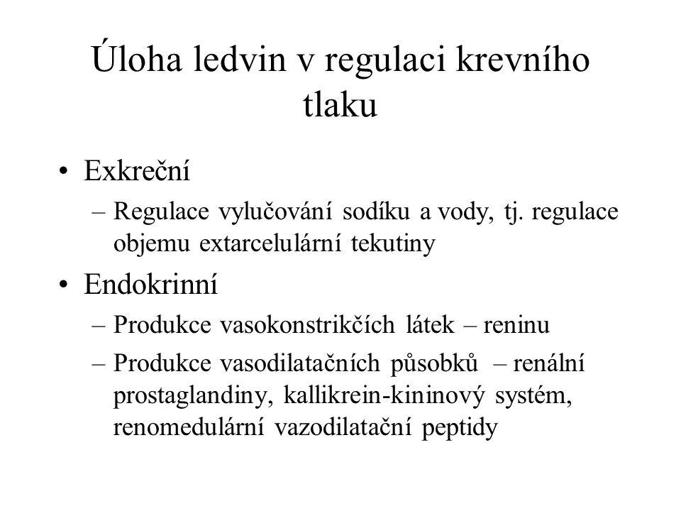 Úloha ledvin v regulaci krevního tlaku Exkreční –Regulace vylučování sodíku a vody, tj. regulace objemu extarcelulární tekutiny Endokrinní –Produkce v