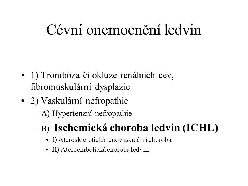 Cévní onemocnění ledvin 1) Trombóza či okluze renálních cév, fibromuskulární dysplazie 2) Vaskulární nefropathie –A) Hypertenzní nefropathie –B) Ische