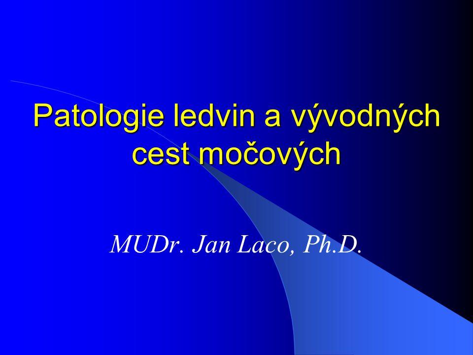 Patologie ledvin a vývodných cest močových MUDr. Jan Laco, Ph.D.