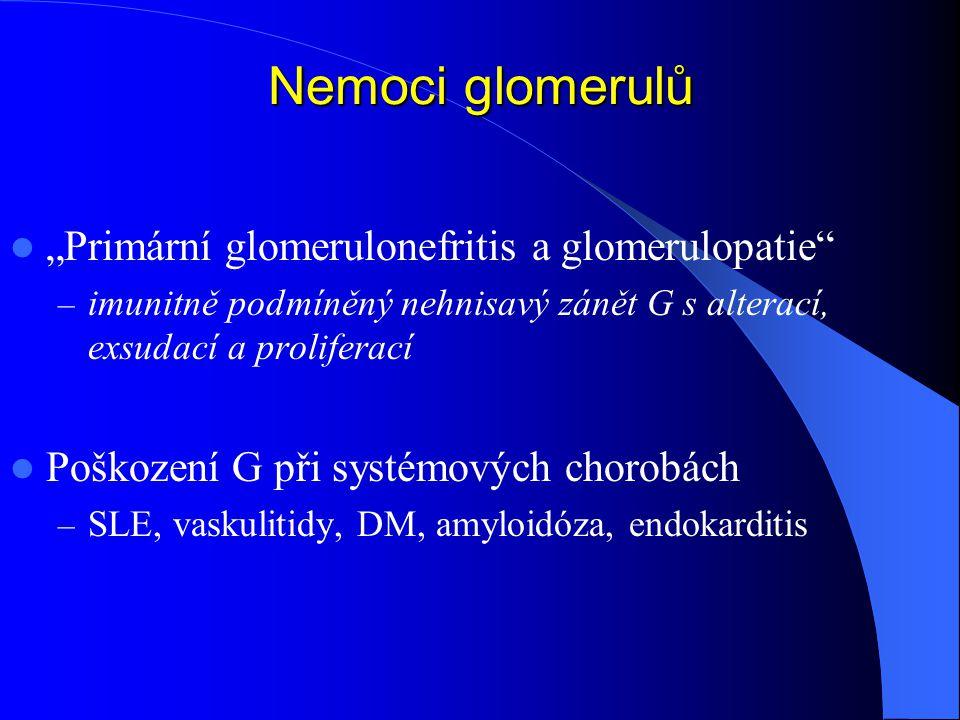 """Nemoci glomerulů """"Primární glomerulonefritis a glomerulopatie – imunitně podmíněný nehnisavý zánět G s alterací, exsudací a proliferací Poškození G při systémových chorobách – SLE, vaskulitidy, DM, amyloidóza, endokarditis"""