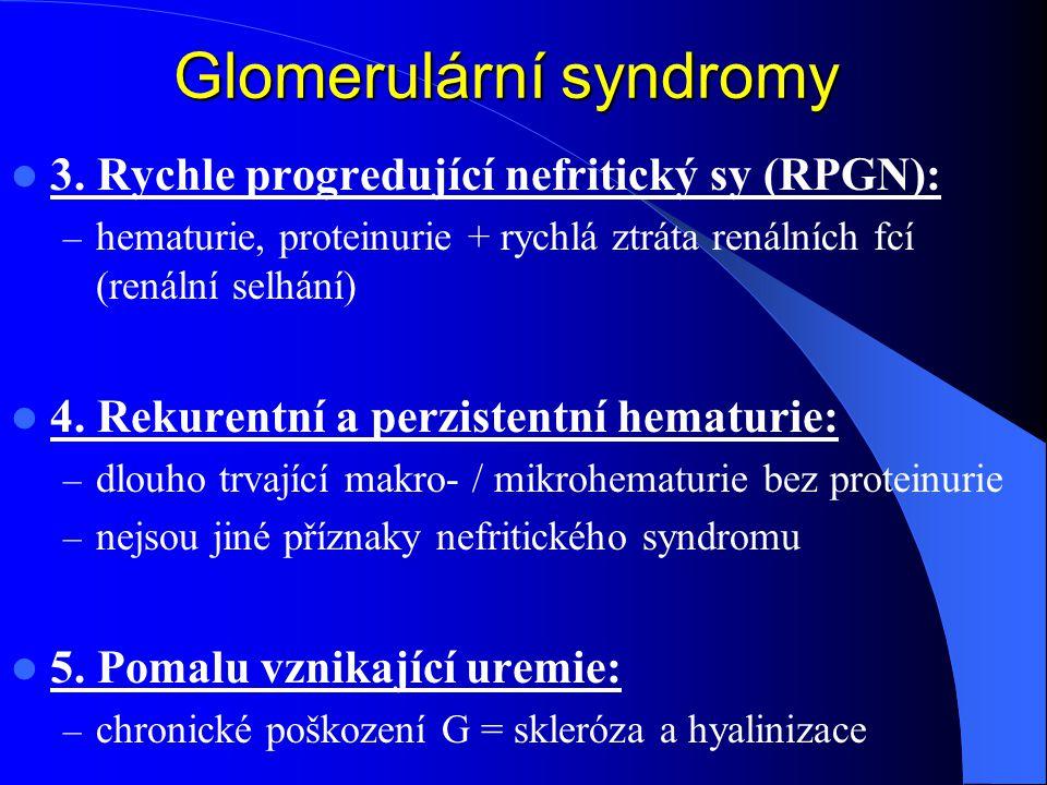 3. Rychle progredující nefritický sy (RPGN): – hematurie, proteinurie + rychlá ztráta renálních fcí (renální selhání) 4. Rekurentní a perzistentní hem