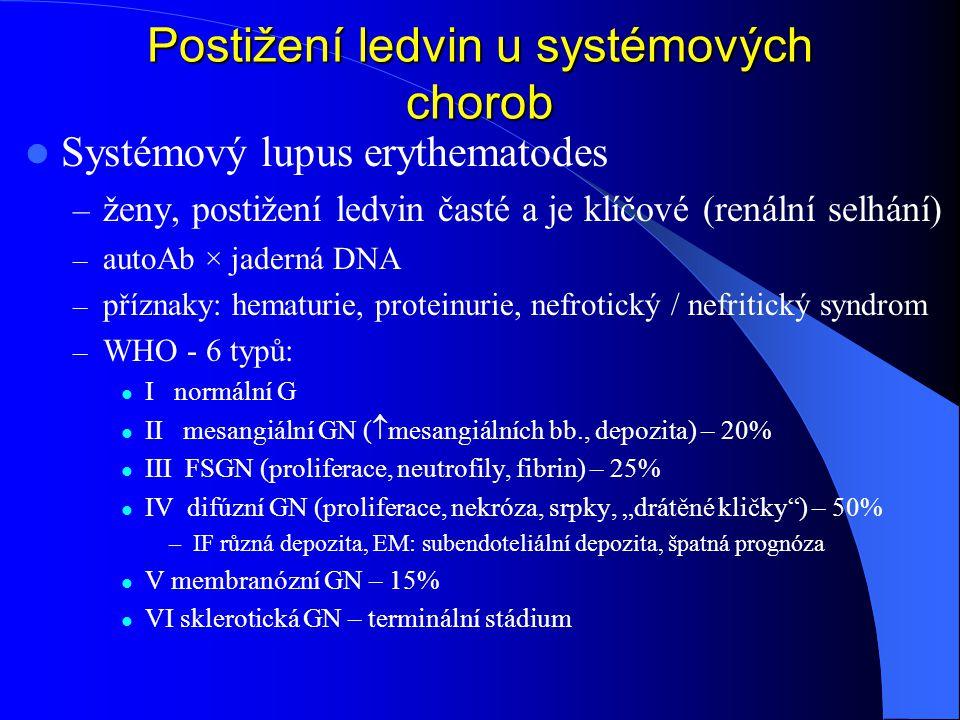"""Postižení ledvin u systémových chorob Systémový lupus erythematodes – ženy, postižení ledvin časté a je klíčové (renální selhání) – autoAb × jaderná DNA – příznaky: hematurie, proteinurie, nefrotický / nefritický syndrom – WHO - 6 typů: I normální G II mesangiální GN (  mesangiálních bb., depozita) – 20% III FSGN (proliferace, neutrofily, fibrin) – 25% IV difúzní GN (proliferace, nekróza, srpky, """"drátěné kličky ) – 50% –IF různá depozita, EM: subendoteliální depozita, špatná prognóza V membranózní GN – 15% VI sklerotická GN – terminální stádium"""