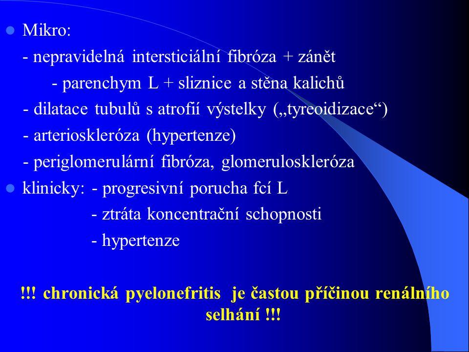 """Mikro: - nepravidelná intersticiální fibróza + zánět - parenchym L + sliznice a stěna kalichů - dilatace tubulů s atrofií výstelky (""""tyreoidizace ) - arterioskleróza (hypertenze) - periglomerulární fibróza, glomeruloskleróza klinicky: - progresivní porucha fcí L - ztráta koncentrační schopnosti - hypertenze !!."""