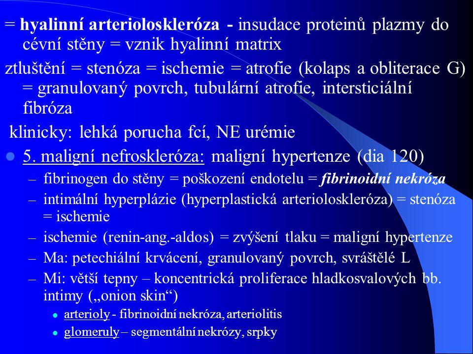 = hyalinní arterioloskleróza - insudace proteinů plazmy do cévní stěny = vznik hyalinní matrix ztluštění = stenóza = ischemie = atrofie (kolaps a obliterace G) = granulovaný povrch, tubulární atrofie, intersticiální fibróza klinicky: lehká porucha fcí, NE urémie 5.