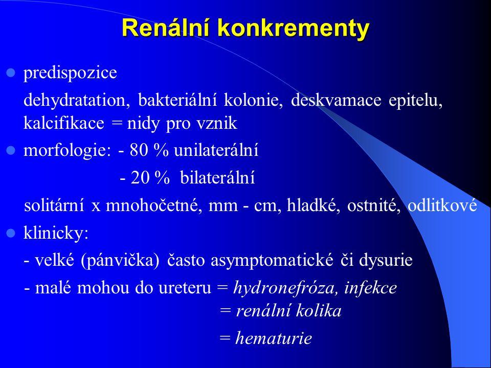 Renální konkrementy predispozice dehydratation, bakteriální kolonie, deskvamace epitelu, kalcifikace = nidy pro vznik morfologie: - 80 % unilaterální - 20 % bilaterální solitární x mnohočetné, mm - cm, hladké, ostnité, odlitkové klinicky: - velké (pánvička) často asymptomatické či dysurie - malé mohou do ureteru = hydronefróza, infekce = renální kolika = hematurie