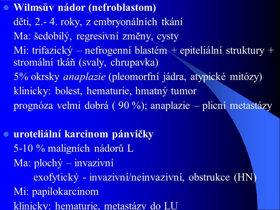 Wilmsův nádor (nefroblastom) děti, 2.- 4.