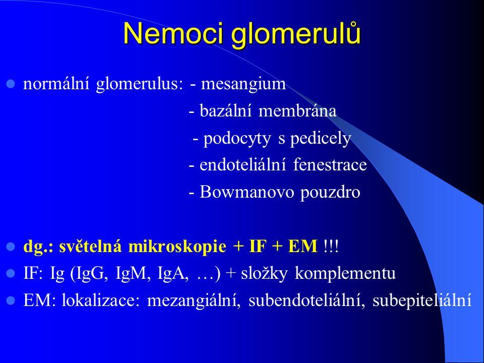 Nemoci glomerulů normální glomerulus: - mesangium - bazální membrána - podocyty s pedicely - endoteliální fenestrace - Bowmanovo pouzdro dg.: světelná mikroskopie + IF + EM !!.