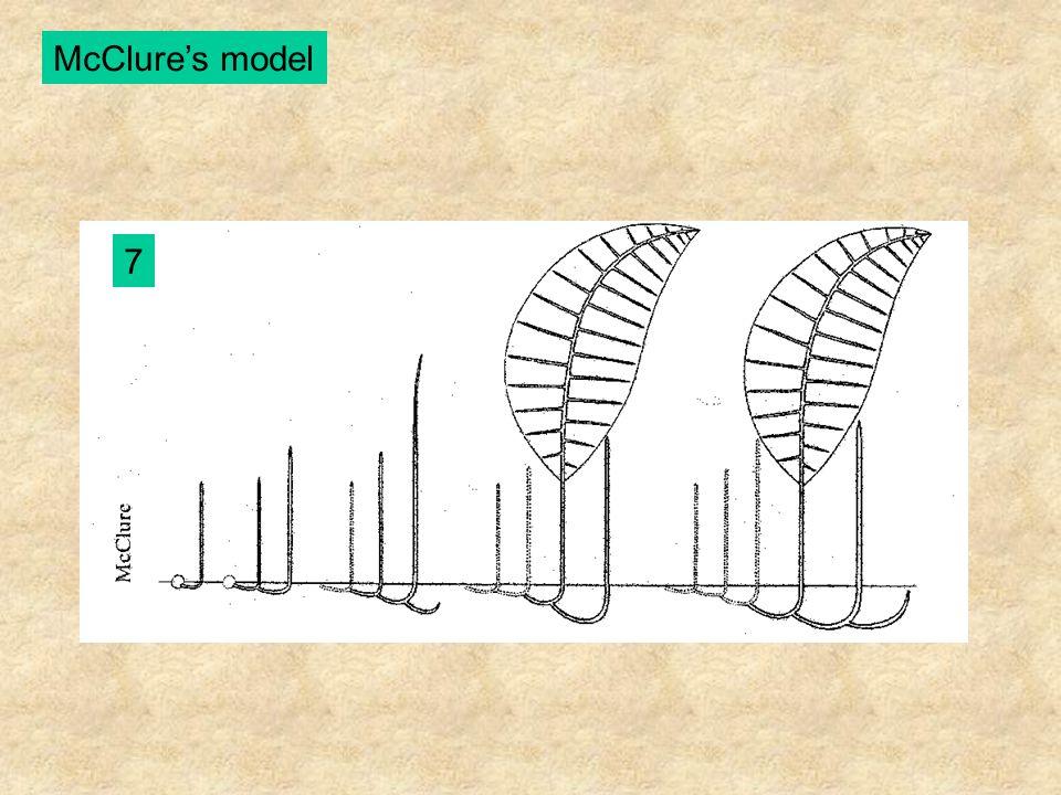 McClure's model 7