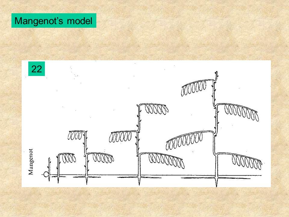 Mangenot's model 22