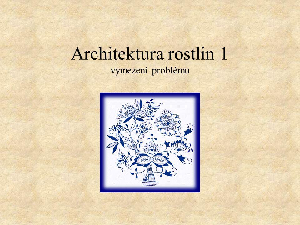 Architektura rostlin 1 vymezení problému