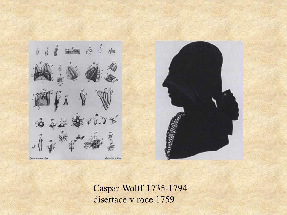 Caspar Wolff 1735-1794 disertace v roce 1759