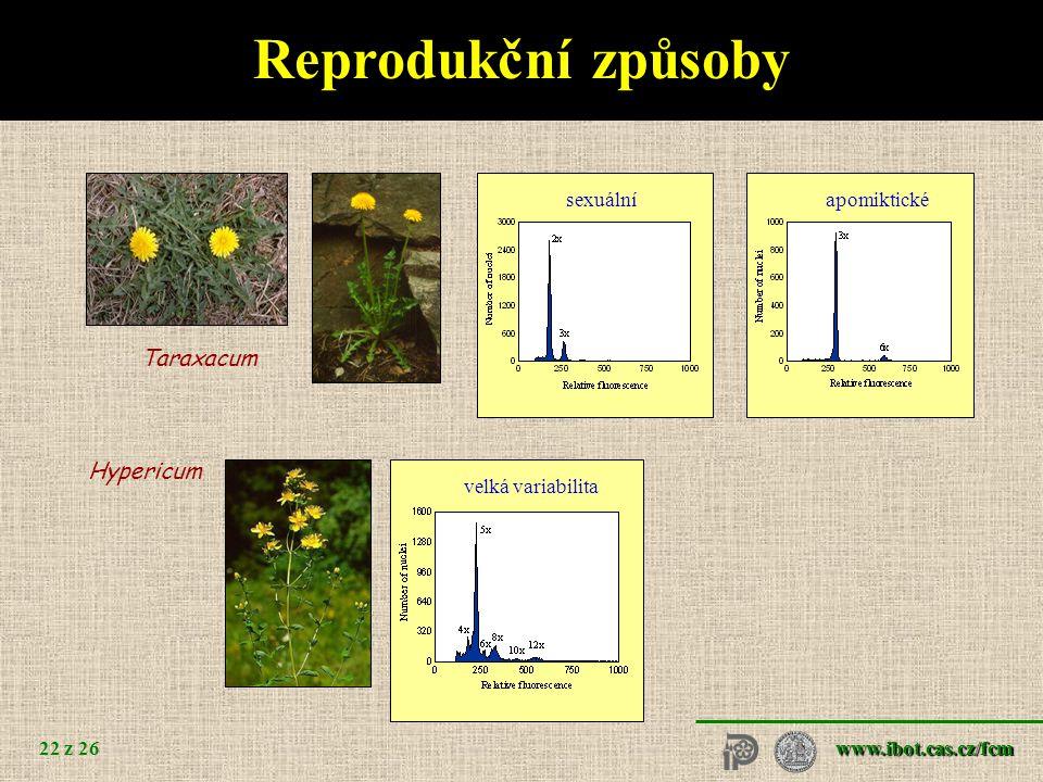 www.ibot.cas.cz/fcm 22 z 26 sexuálníapomiktické Reprodukční způsoby Taraxacum velká variabilita Hypericum