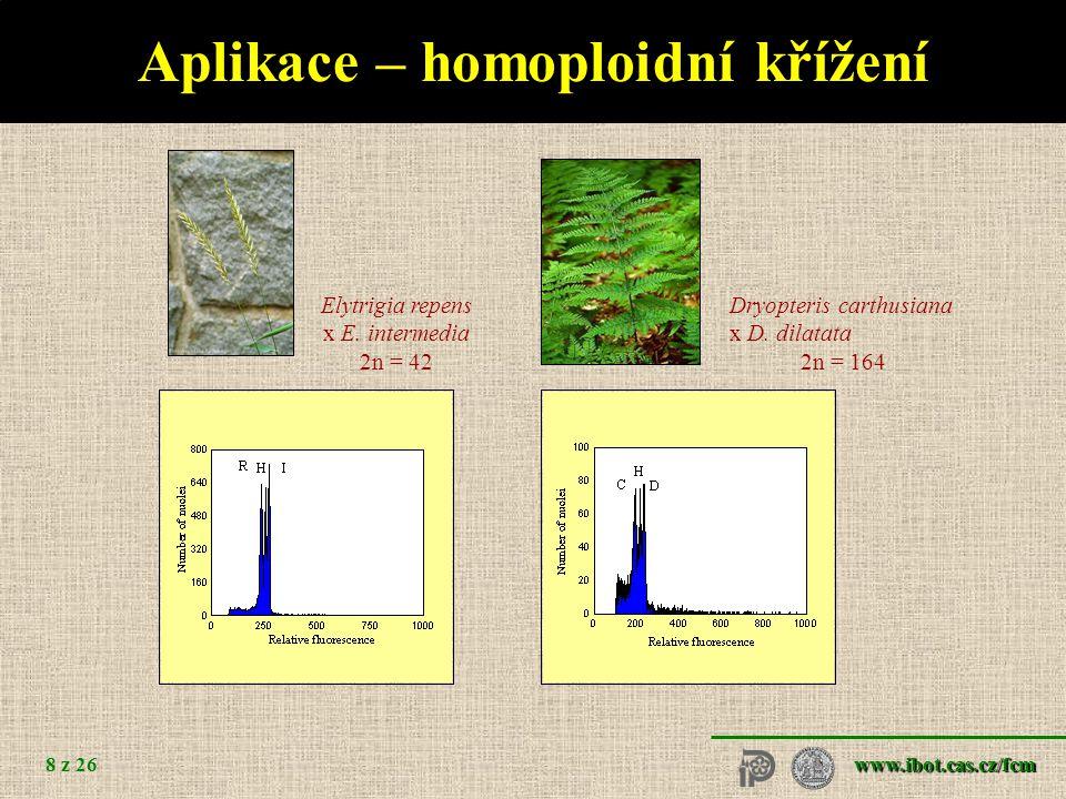 www.ibot.cas.cz/fcm 9 z 26 Aplikace – vnitrodruhová variabilita Taraxacum stenocephalum (2n = 32)