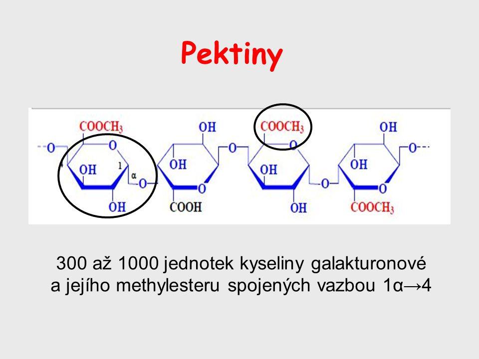 Pektiny 300 až 1000 jednotek kyseliny galakturonové a jejího methylesteru spojených vazbou 1α→4
