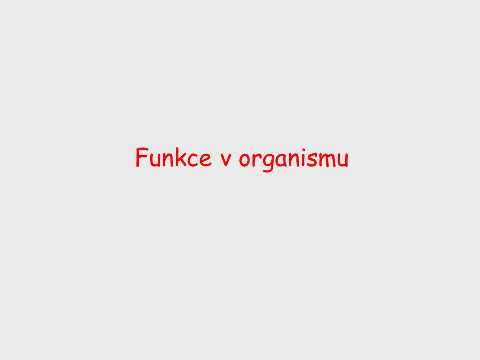 Funkce v organismu