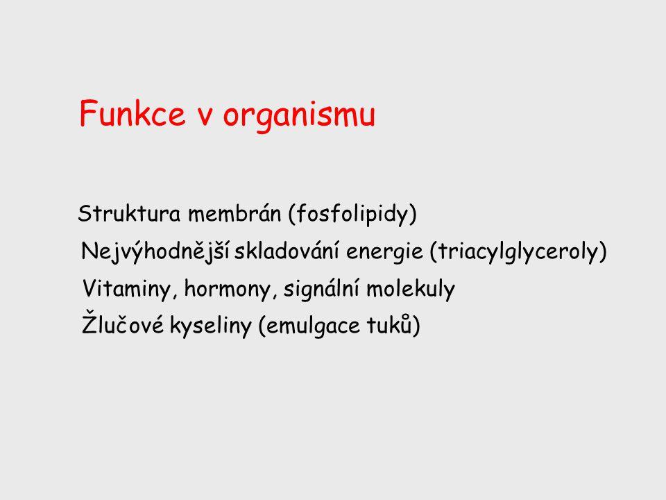 Struktura membrán (fosfolipidy) Nejvýhodnější skladování energie (triacylglyceroly) Vitaminy, hormony, signální molekuly Žlučové kyseliny (emulgace tu