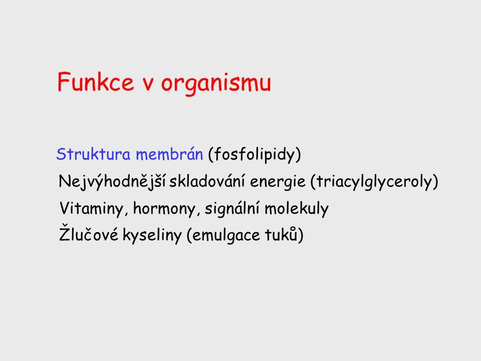 Funkce v organismu Struktura membrán (fosfolipidy) Nejvýhodnější skladování energie (triacylglyceroly) Vitaminy, hormony, signální molekuly Žlučové ky